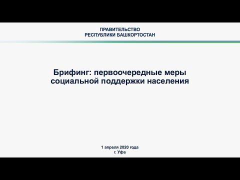 Онлайн-брифинг, посвященный мерам социальной поддержки жителей республики в условиях коронавирусной инфекции