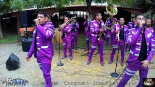 Las Uvas (Banda M9 En Vivo)