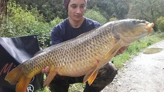 Carpfishing Portugal - Giant Carp Mix Boilies