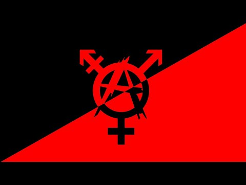 Trans Rights and Communism [ Live Stream Interview ]