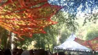 Deliriant live @ Insomnia Festival 2015