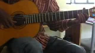 Flamenco guitar - EL TORO..