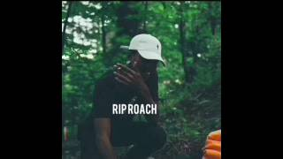 RIP ROACH (Only Ski Mask The Slump God's Verse)