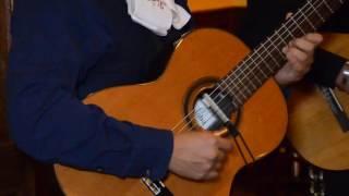 El mariachi ( morena de mi corazón ) cover