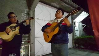 Tardes De Bohemia/Trio - Gracias Te Doy (Éxito Sonora Santanera)