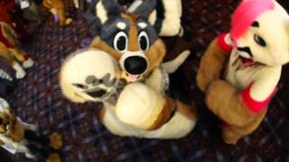 Midwest FurFest 2015 | Tonight is the night