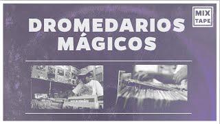 Mixtape: Dromedarios Mágicos