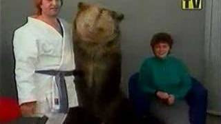 Super Niedźwiadek