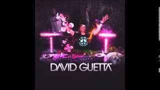 David Guetta  Showtek   Bad ft  Vassy Instrumental
