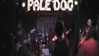 American Speedway Cocaine Pale Dog