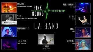 Pink Sound Tribute Band Torino - Presentazione della band