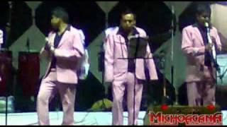 Banda La Michoacana - El Burrito Live!.avi