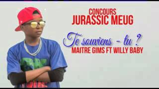 Maître gims feat Willy baby-te souvient tu