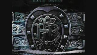 Nickelback Dark horse - Next Go Round