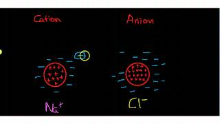 Anions and Cation