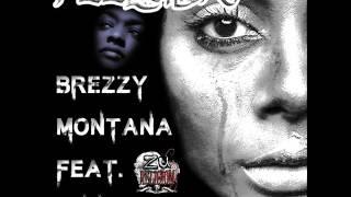Brezzy Montana: Feelings (feat. Yung Marco)