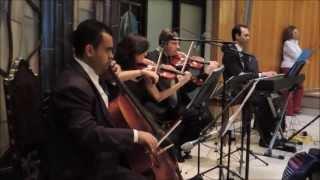 I Was Born to Love You - Música Instrumental de Casamento para Entrada do noivo na Igreja