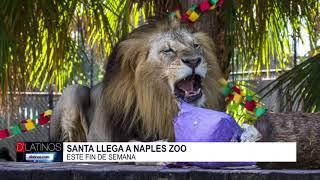 Santa llega a Naples Zoo