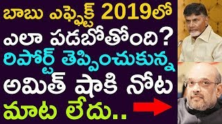 How Babu Is Going To Effect For BJP In 2019 Elections?? Amit Sah Brought The Report He Is In Shock !