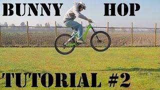 Tutorial #2 - Bunny Hop