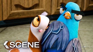 Will Smith Becomes A Pigeon Scene - SPIES IN DISGUISE (2019)