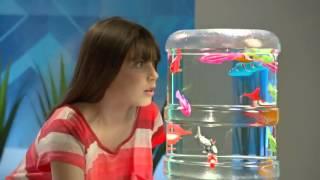 Real Brinquedos - Robo Fish - DTC