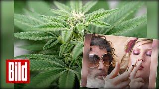 Kiffer-Tag - Cannabis für den Joint-Freund / 420