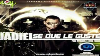 Jadiel - Se Que Le Guste (Prod. Radical Y Frank Fusion)