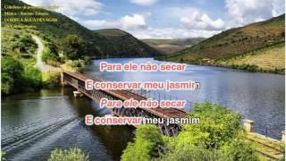 350 CORRE A ÁGUA DEVAGAR-de Carolina Santos-ORIGINAL-António Teixeira-Cabeceiras de Basto