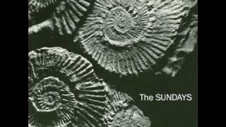 THE SUNDAYS-I KICKED A BOY.wmv