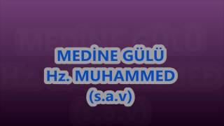Hazreti Muhammed  Medine Gülü