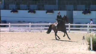 Donner Vogel at Devon Fall Classic 2012 Low JrAO Jumpers Friday