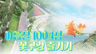 [특집다큐'섬과꽃']여름에 만난 꽃빛, 섬여행~꽃구경 #수국 #홍도원추리 다시보기