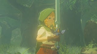 Linkle Pulls Out The Master Sword - Zelda Breath of the Wild