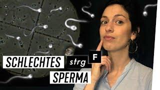 Handy, Stress, Umweltgifte: Sperma in Gefahr? | STRG_F