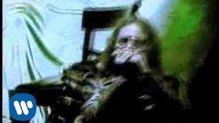 El Tri - Chilango incomprendido  (Video Oficial)
