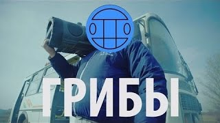 Грибы - Тает Лёд (Official Music Video)