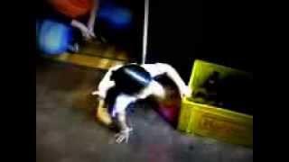 Sofia Dançando Funk... tá que tá... ♫