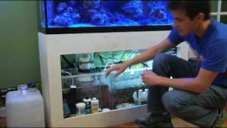Auto Top Off (ATO) Systems In Saltwater Aquariums
