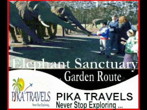 Tours To South Africa By PIKA TRAVELS