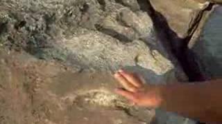Piedra con sonido de Campana en Guanajuato Mexico