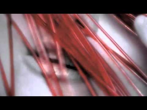 Cocoon Piano Bjork Chords Chordify