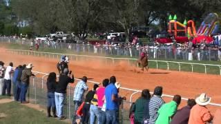 La Cheyenne vs  El Bionico  10 18 15