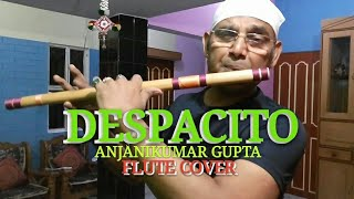 Despacito l Louis Fonsi l Ft.Daddy Yankee l Flute Cover