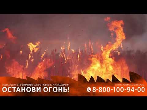 Останови огонь
