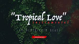 (Type Beat) TROPICAL LOVE  Instrumental 🌴 l Dancehall Pop 2018 l prod by DemsRiddim Beats l