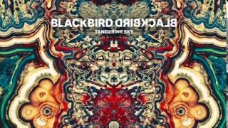 Blackbird Blackbird - Visionary (iTunes Exclusive)