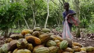 Kinderarbeid - educatieve film 2016 | UNICEF