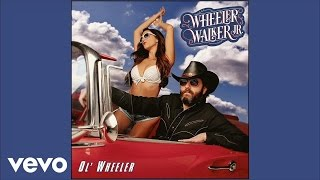 Wheeler Walker Jr. - If My Dick Is up, Why Am I Down? (Audio)