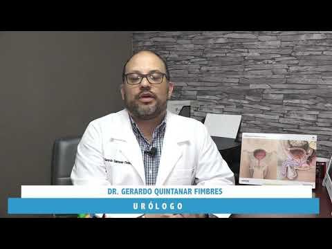Gerardo Quintanar Fimbres - Multimedia